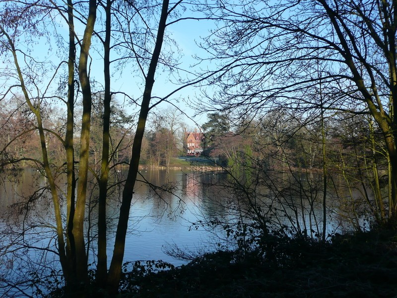 Beautiful view of the lake -  Whiteknights campus