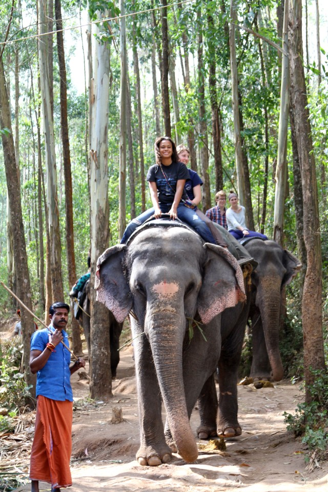 A student rides on the back of an Indian elephant. In their culture, the elephant represents wisdom and takes on the form of the deity Ganesh (a popular God of the Indian religion).