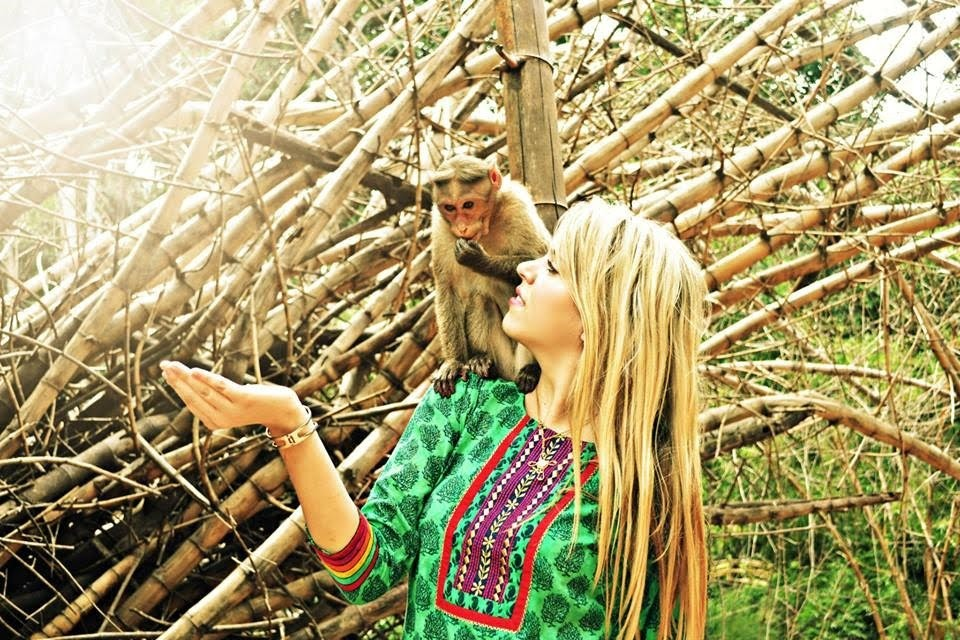 The rhesus monkey is local to many areas around India; here it sits on the shoulder of a USAC student, hoping for a bit of food.
