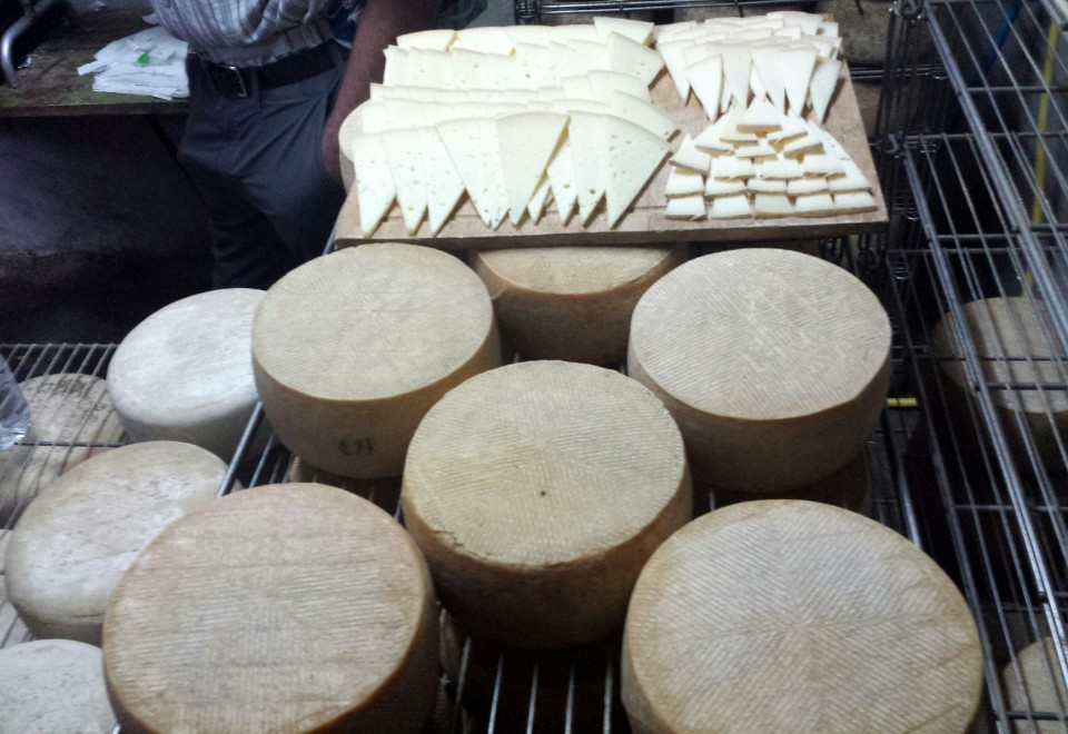 Cheese tasting: goat cheese et sheep cheese