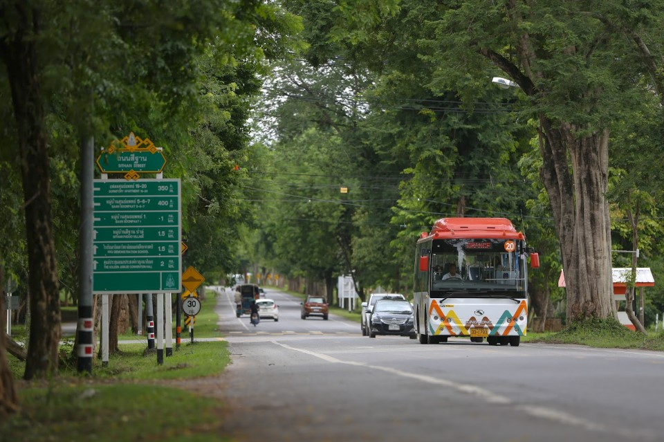 The beautiful road in and out of Khon Kaen University