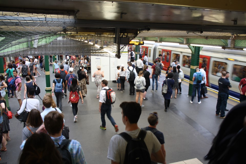 Join millions of locals and visitors in using the widespread and well-connected London public transportation system
