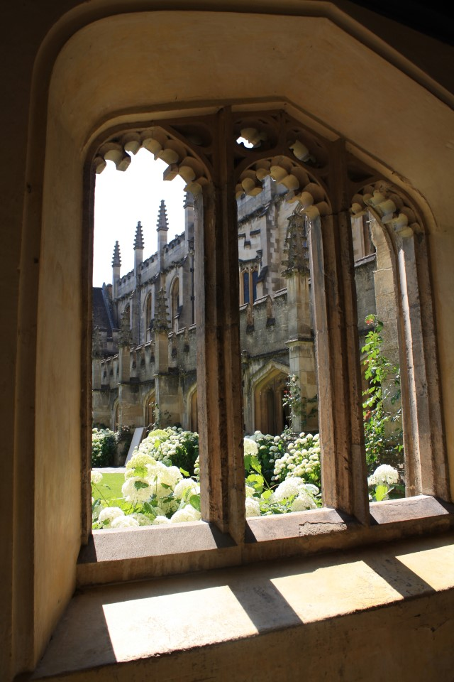 Sneaking a peak of the beauty of Oxford
