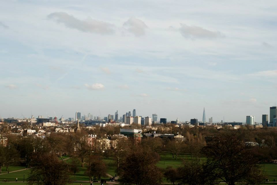 The view of London from Primrose Hill